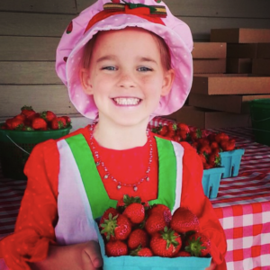 brocks-stawberry-farm